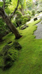 鎌倉散策 報告寺