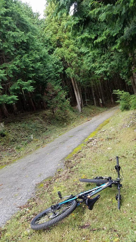 MTB 片瀬林道 シラヌタの池