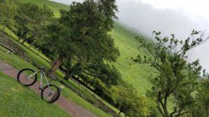 雨上がりの新緑トレイル