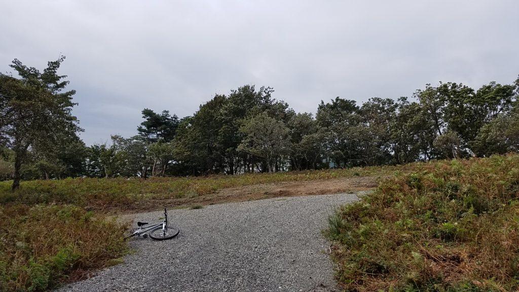 MTB 林道ピーク 整備林道